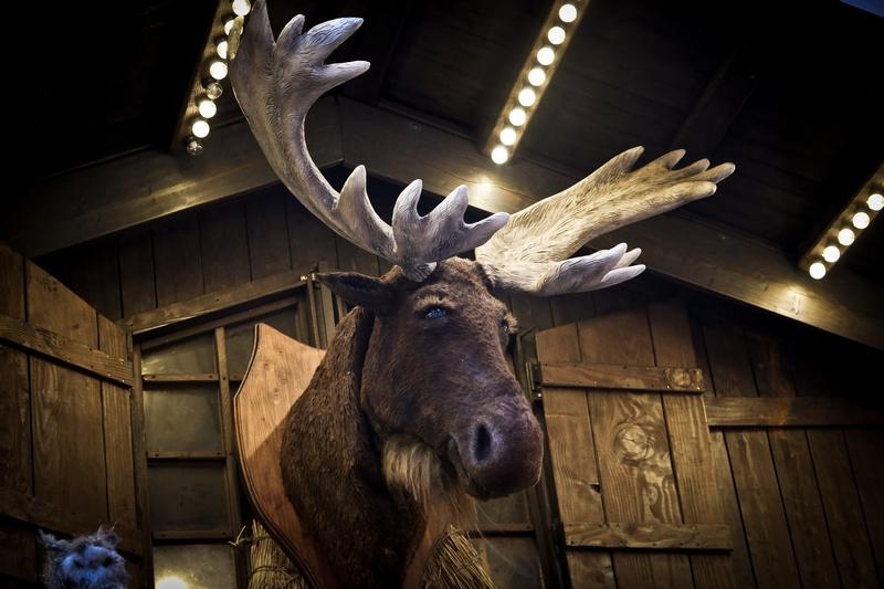 Reindeer Manchester markets